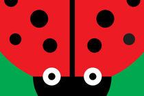 Rectangimal Ladybug von Krista de Groot