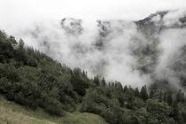 Nebel by Jens Berger
