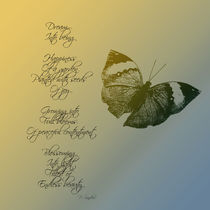 Md-dream-poem-butterfly
