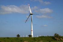Windkraft-34