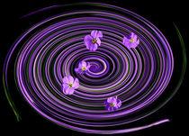 Blumenwiese  von Barbara  Keichel