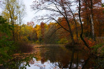 Herbst am See von AD DESIGN Photo + PhotoArt