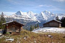 Schweizer Alm (Chuebodmi) von Bettina Schnittert