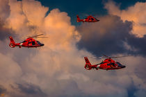 Coast Guard Helicopter Patrol von Chris Lord