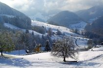 Swiss Snow Scene by John McCoubrey