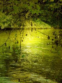 Under Water Sun von Lucie Gordon
