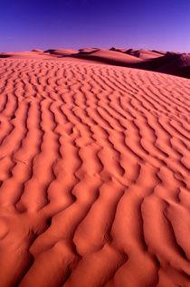 Dunes von Steve Outram