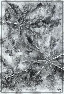 Crystals 2 von dieroteiris