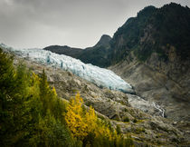 Glacier des Bossons - 1 by Russell Bevan Photography
