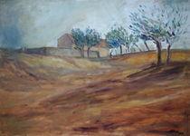 Das Licht der Toskana by Ellen Fasthuber-Huemer
