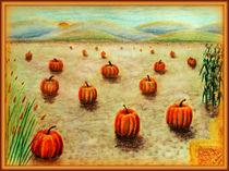 Pumpkin Field von Christi Ann Kuhner
