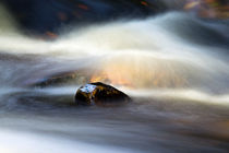 Flowing River II by David Pringle