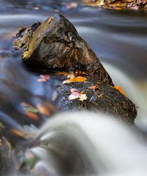 Flowing River by David Pringle
