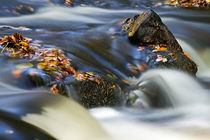 Flowing River III by David Pringle