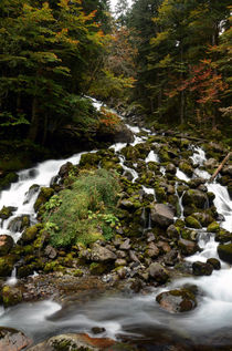 Uelhs deth Joèu Falls by RicardMN Photography