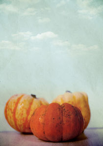 Harvest I by Sybille Sterk