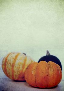 Harvest II von Sybille Sterk