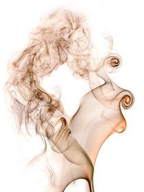 Metamorphosis by Shannon Workman