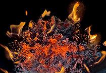 Fireart-7457-2012