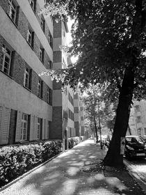 """Zebra house"" - ""Zebrahaus"" von Ralf Rosendahl"