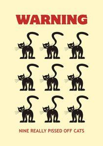 Nine-cats-a2-b