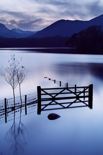 Evening at Derwent Water   von Martin Williams