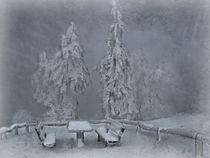 Winterstimmung von Elke Balzen