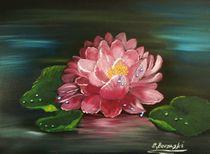 Wasserlilie by Eva Borowski