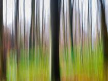 'Herbst in Bewegung 1' by Thomas Joekel