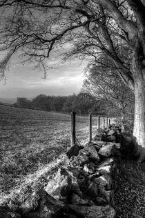 Chevin Dry Stone Wall #2 Mono by Colin Metcalf