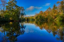 Loch Neaton in Watton by Mark Bunning