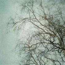 bleakly III by Priska  Wettstein