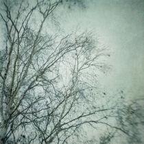 bleakly II by Priska  Wettstein