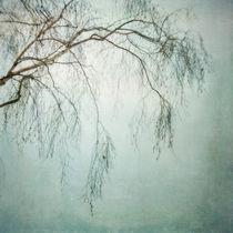 bleakly I by Priska  Wettstein