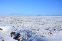 Schneelandschaft-0