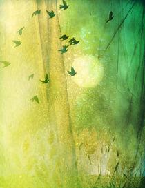 dreamtime von Franziska Rullert