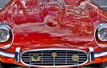 Jaguar by Leopold Brix