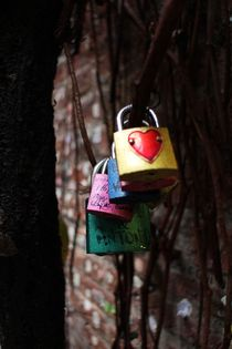 Love Locked von Sean Foreman