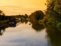 Grand Union Canal at Dawn by Louise Heusinkveld