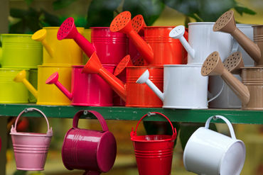 Watering-cans0788