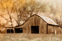 American West Barn von Betty LaRue