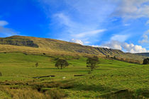 Mallerstang Dale, Cumbria by Louise Heusinkveld