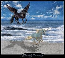 Unicorn-beach2