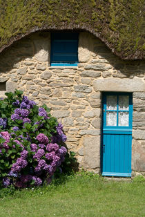 Blue door and hydrangeas - Blaue Tür und Hortensien by Ralf Rosendahl