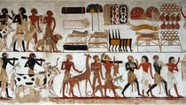Egyptian Wall Painting of Temple of Beit El-Wali von RicardMN Photography