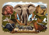Africa 1 von Fernando Ferreiro