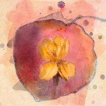 Autumn Dream von Betty LaRue