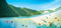 Paradise-ocean-i-mittel