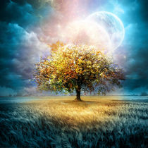 Moon-tree