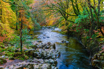 River Esk, Lake District by Craig Joiner